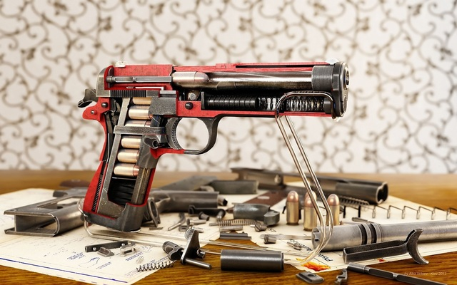 in_hand-gun.jpg